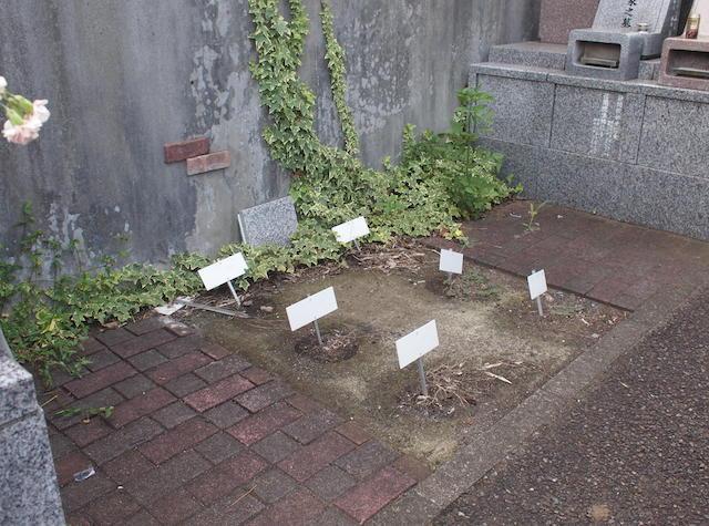 藤沢霊園02