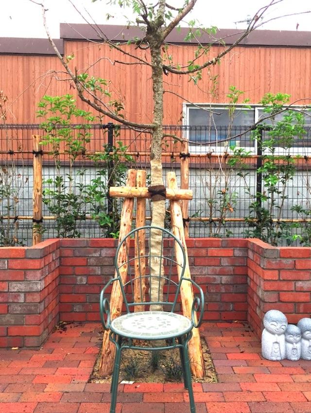 樹木葬「桜雲(さくらぐも)」02