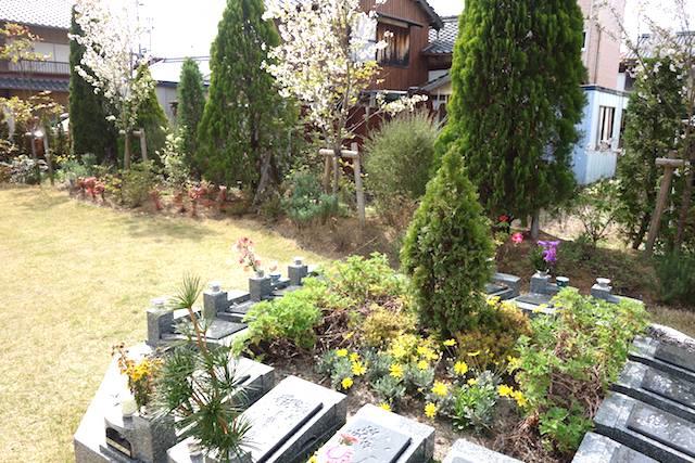 樹木葬「桜雲(さくらぐも)」05