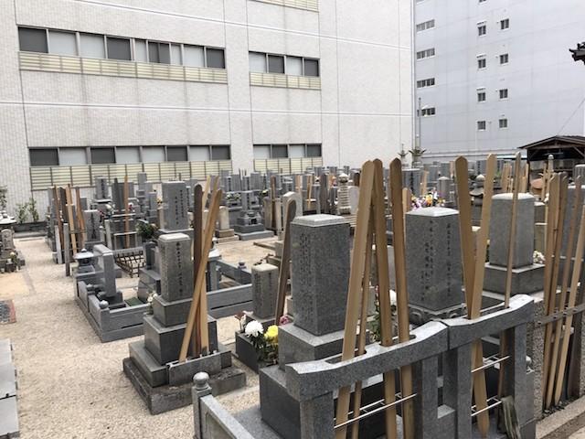 長久寺墓地−基本−霊園5