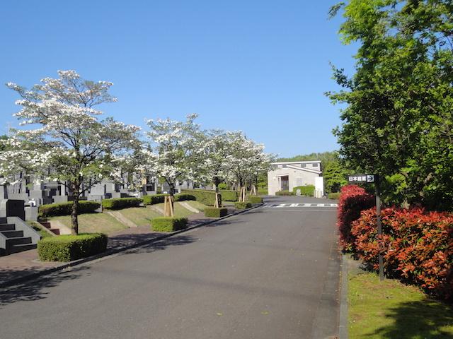 東京多摩霊園−基本−霊園3