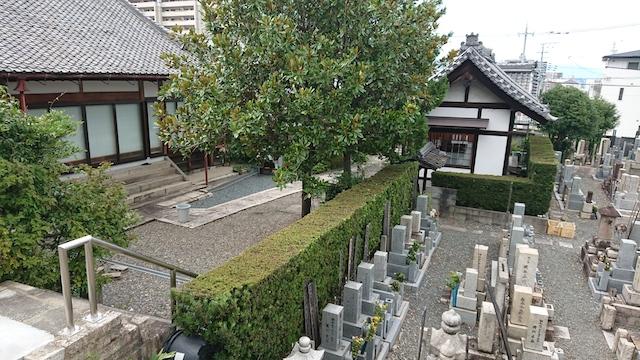 西福寺霊園ー霊園5