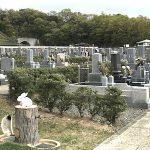 岩出市営 根来公園墓地16