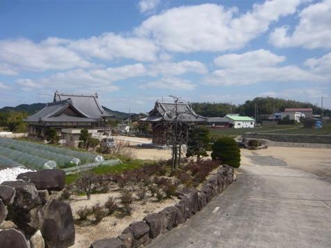 観音寺墓地06