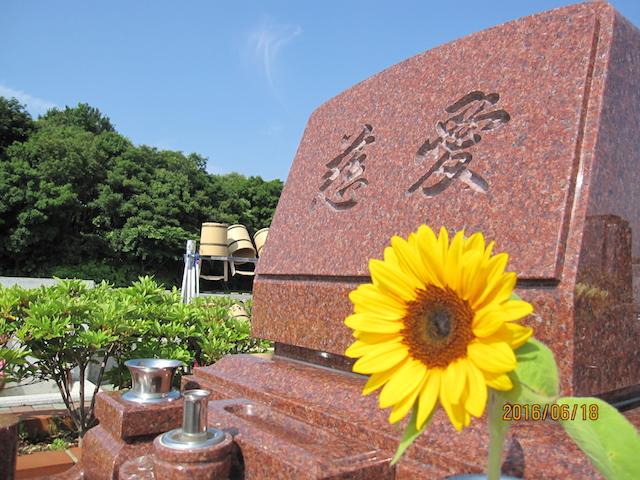 神戸大霊苑04