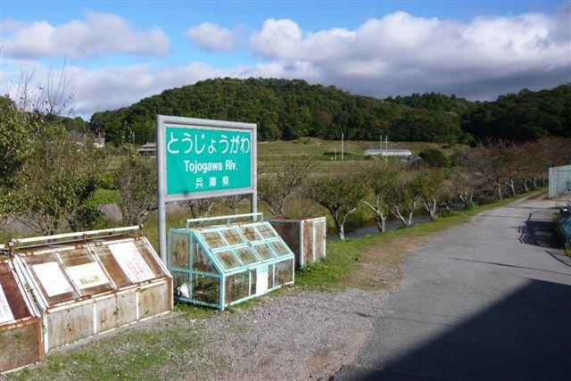 中野霊園01