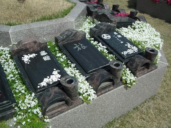 神戸三田メモリアルパーク14