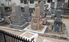 法泉寺春日野墓地06