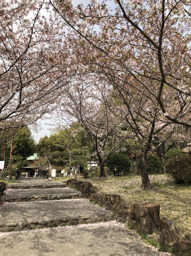 乾坤院墓苑05