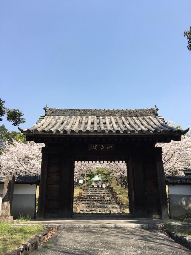 乾坤院墓苑03