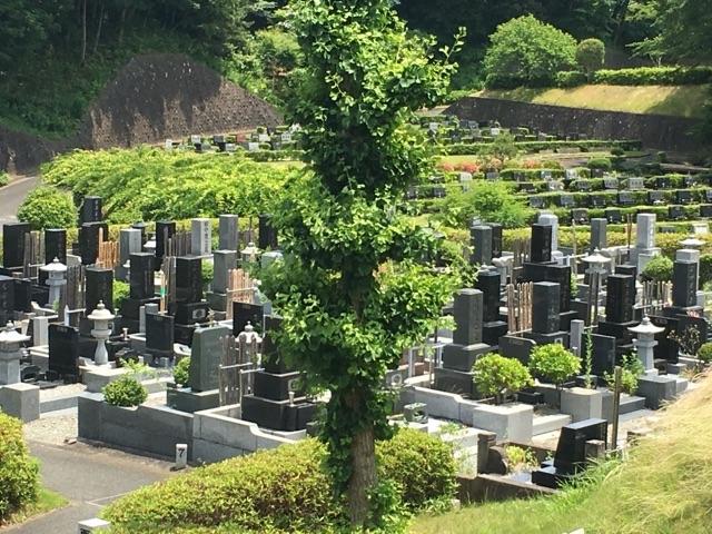 平塚市営 土屋霊園06