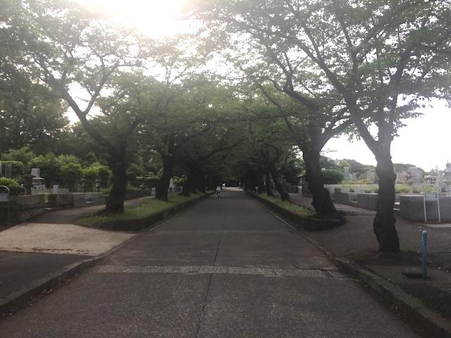川崎市営 緑ヶ丘霊園05