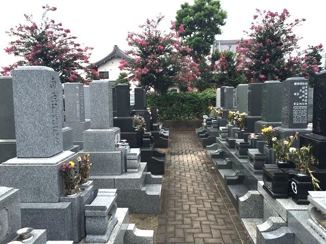 浄光寺墓地−霊園全体