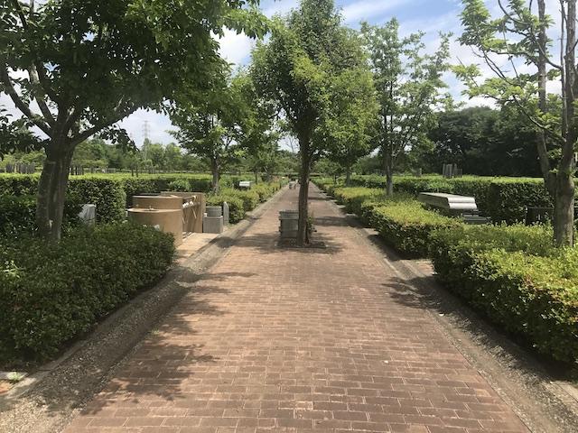 船橋市営 馬込霊園−霊園芝通路