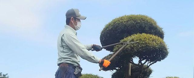 千葉県松戸市のお墓のお掃除、植木の手入れ、飯沼植木_05