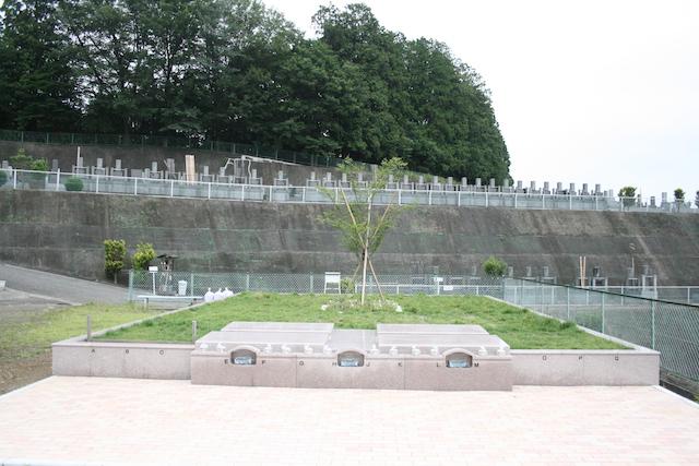 入間霊園−樹木葬1
