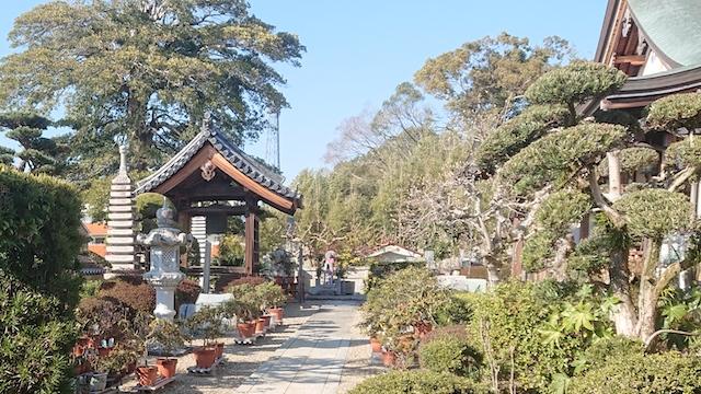 善福寺−寺院境内