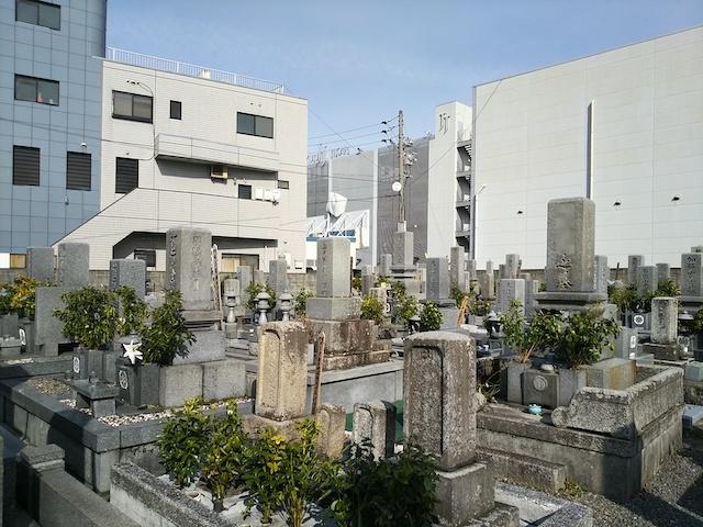 松山市営 小坂墓地04