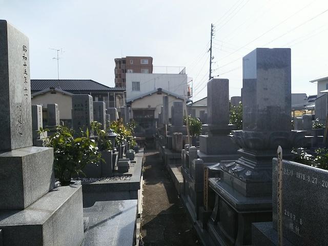 松山市営 小坂墓地01