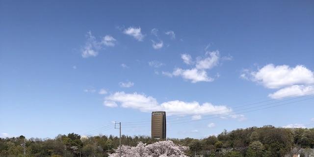 平和公園養念寺03