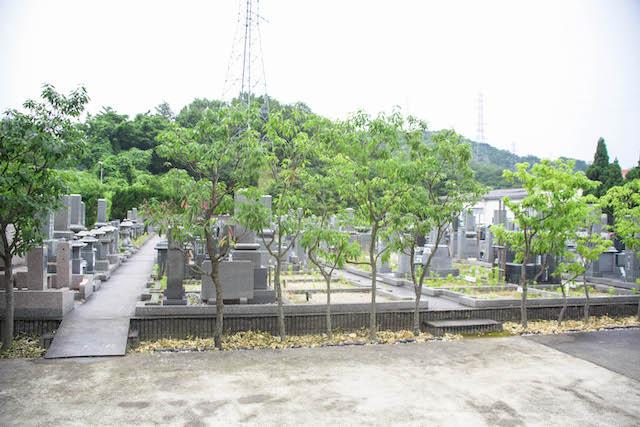 宝善院桜霊園05