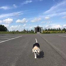 終活相談ネットワーク北海道_02