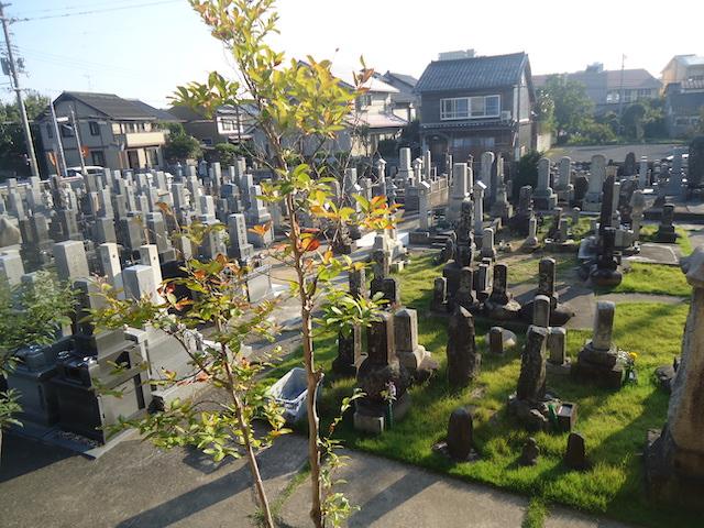 妙要寺墓地05