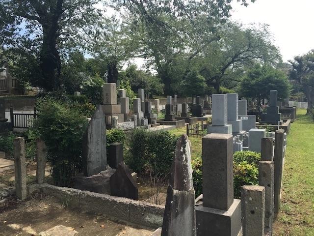 染井霊園02
