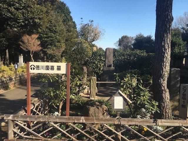 谷中霊園03