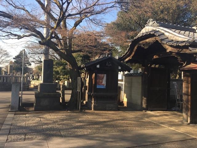 谷中霊園06