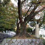 京都市営地蔵山墓地
